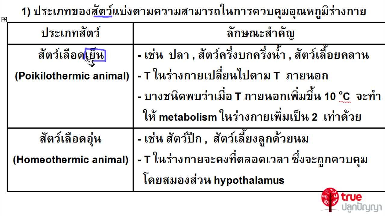 ชีววิทยา ม.4-6 เรื่อง การรักษาดุลยภาพในร่างกาย ตอนที่ 7