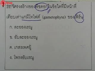 ชีววิทยา โอลิมปิก ม.ต้น ปี2551 ข้อ 22