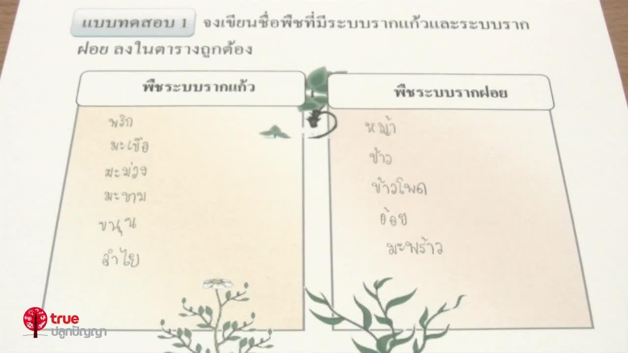 พืชและสัตว์ ตอน 1