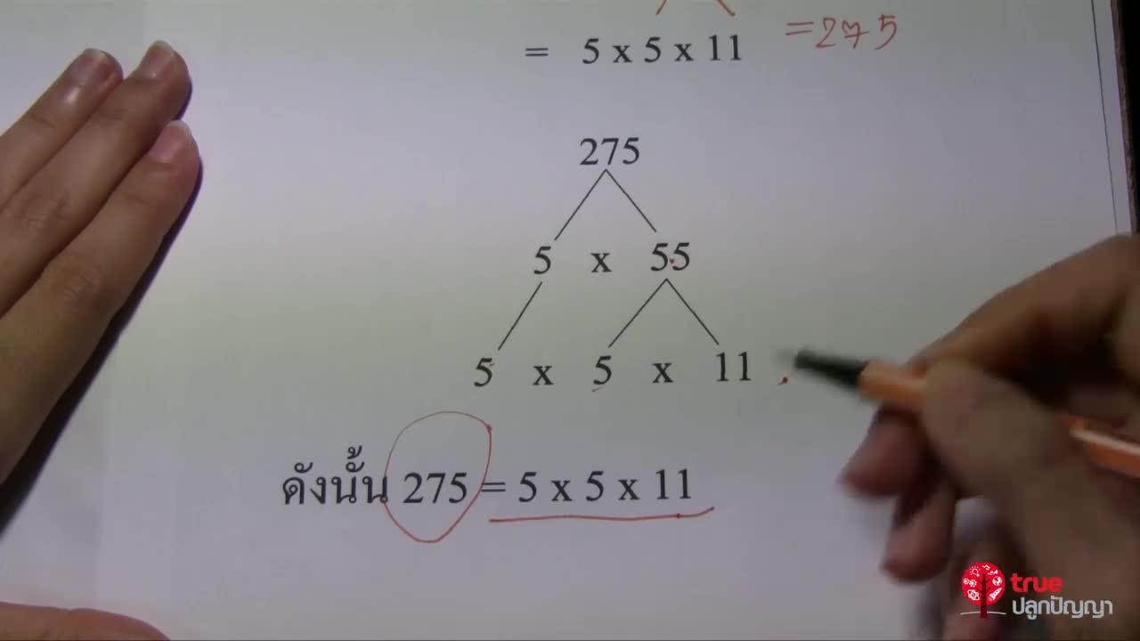 ตัวประกอบและจำนวนนับ ป.6 ตอนที่2