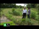 วิทย์ติดดิน ตอน เกษตรอินทรีย์... ทำงานได้ประโยชน์ 2