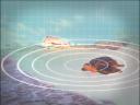 วันละนิดวิทย์เทคโน ตอน เต่าทะเลจำถิ่นกำเนิดได้จริงหรือ