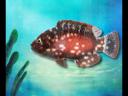 วันละนิดวิทย์เทคโน ตอน ปลาทะเลต้องกินน้ำหรือเปล่า