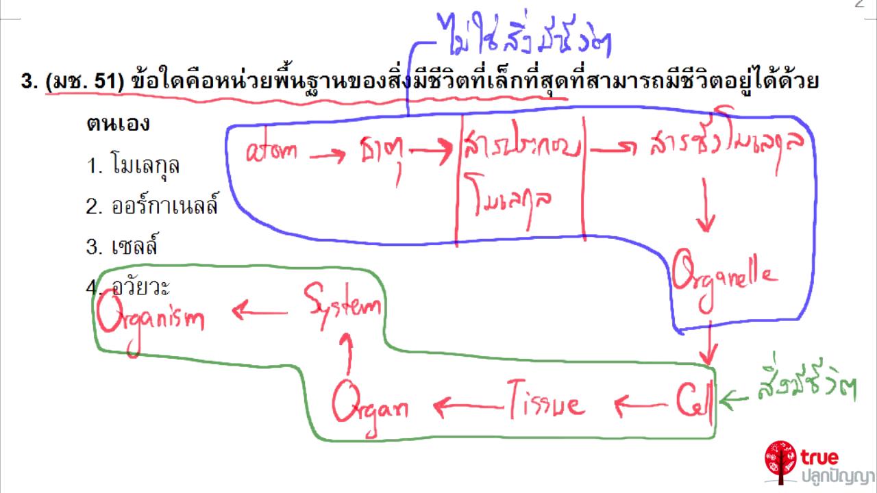 ชีววิทยา ม.4 เรื่อง เซลล์ ตอนที่ 9