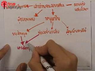 เฉลยข้อสอบ GATเชื่อมโยง ฉบับกรกฎาคม ปี2553 ตอนที่2