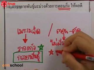 ข้อสอบวิทย์ เข้าม.1 โรงเรียนรัฐบาล ชุดที่ 1 ข้อที่ 11