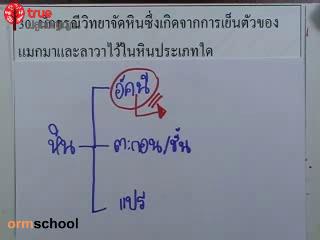 ข้อสอบวิทย์ เข้าม.1 โรงเรียนรัฐบาล ชุดที่ 1 ข้อที่ 30
