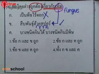 ข้อสอบวิทย์ เข้าม.1 โรงเรียนรัฐบาล ชุดที่ 1 ข้อที่ 36